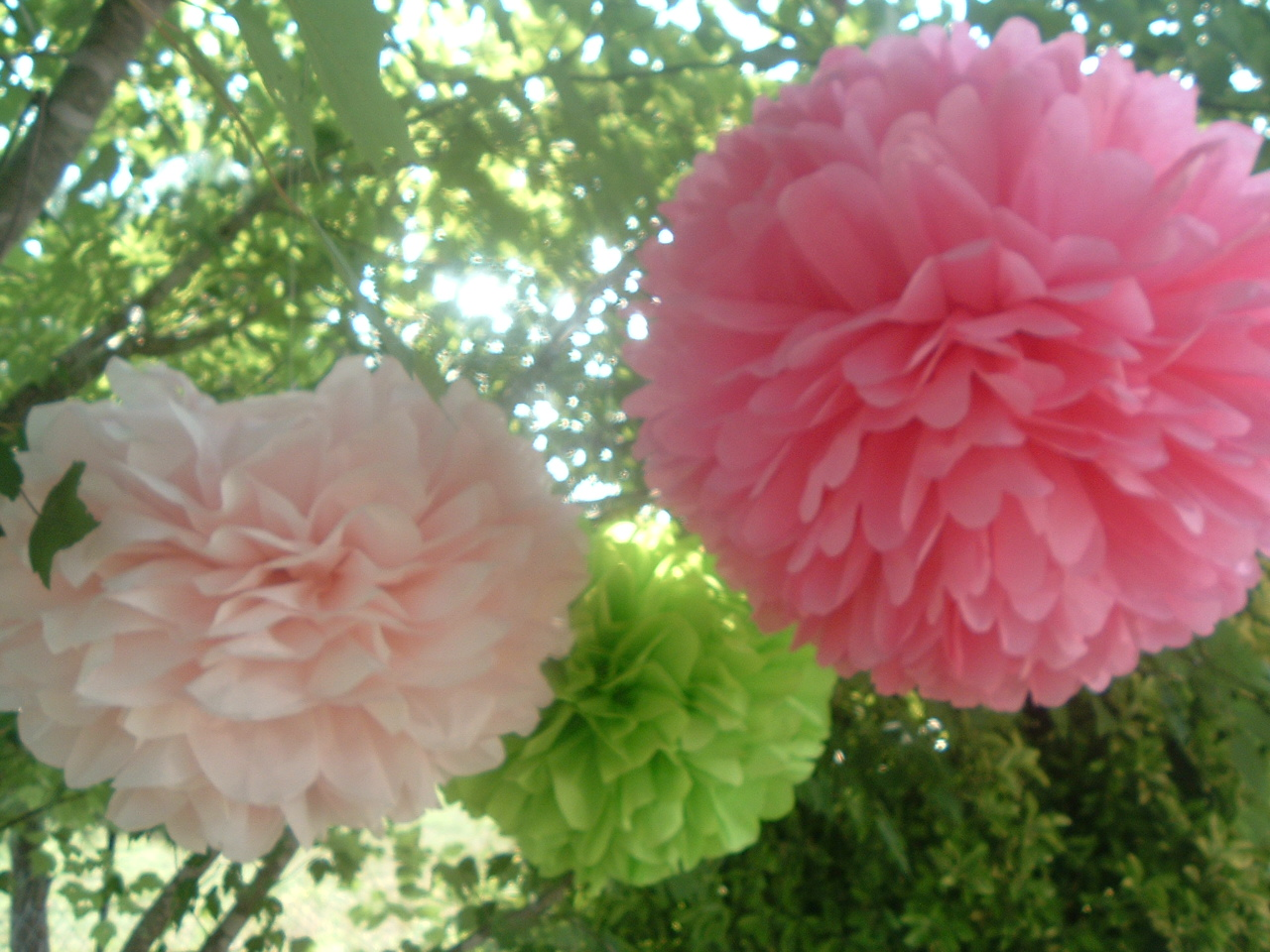 6 Tissue Paper Pom Poms Ready To Fluff Choose Your Colors Party